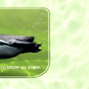 pinguin-innen
