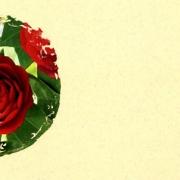 klappkarte-rosen-innen